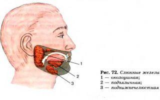 Методы лечения и диагностики кисты в слюнной железе
